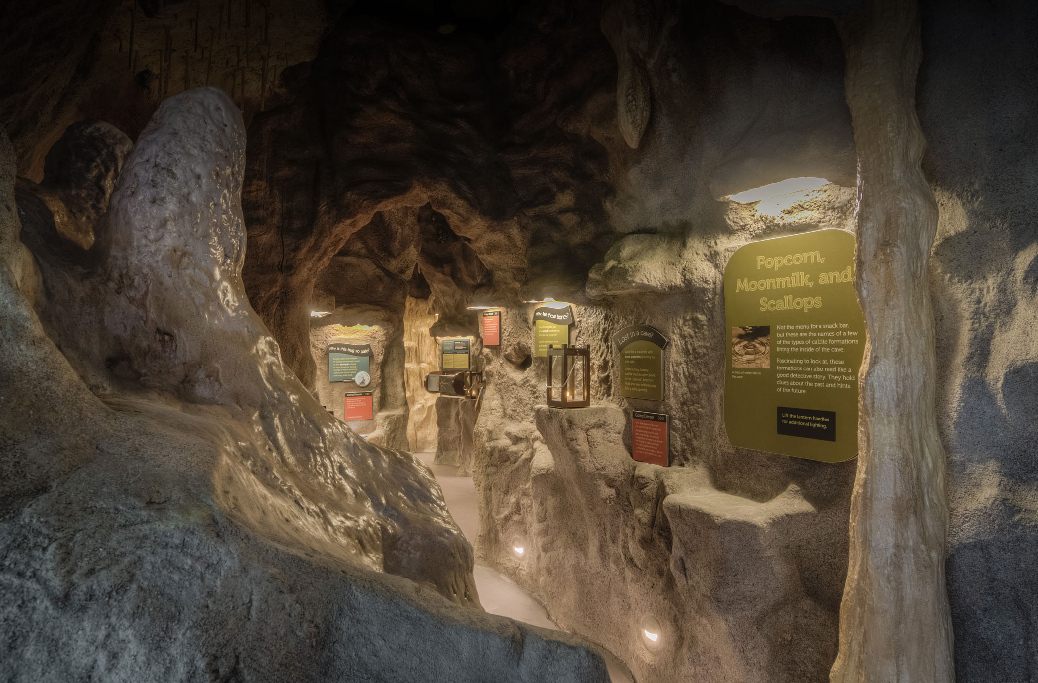 Modeled cave with exhibits inside