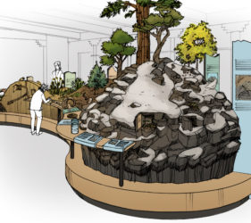 Sketch showing diorama island in center of exhibits with snow on ground