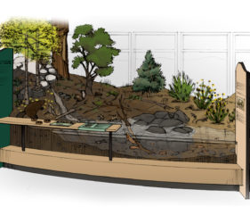 Sketch showing diorama island in center of exhibits